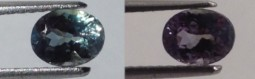 0.66ct Oval Alexandrite